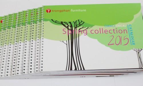 Một cuốn catalogue nên dày bao nhiêu ?