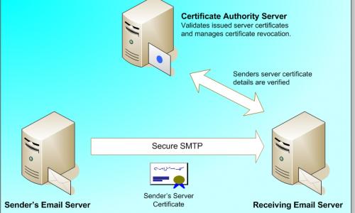 Tôi có mail server không?